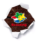scoutingnl