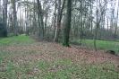 Kampeerveld Hoek van Ruys